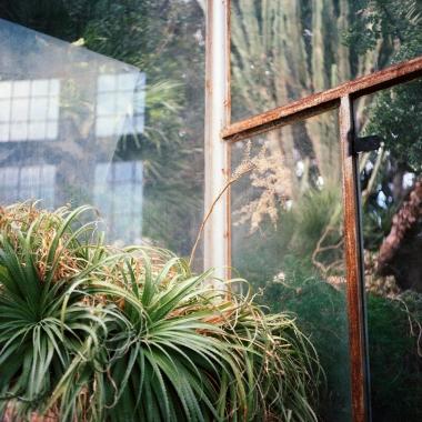 jardinBotaniqueGalerienomade008