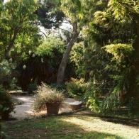 jardinBotaniqueGalerienomade015