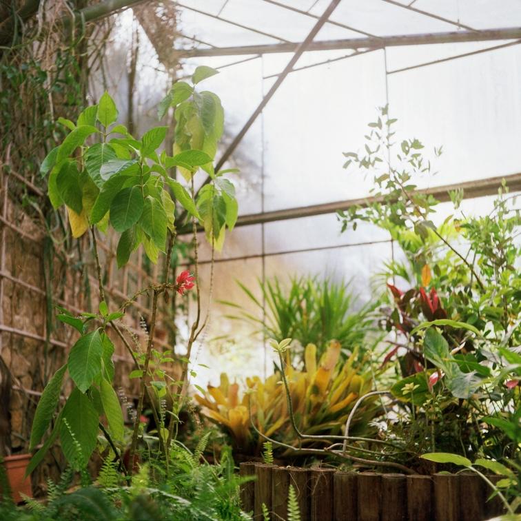 jardinBotaniqueGalerienomade016